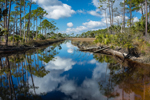 Tributary of East River with Cloud Reflections at St. Marks National Wildlife Refuge, Gulf Coast, Florida Panhandle, Wakulla County, St. Marks, FL