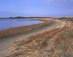 Coskata Pond