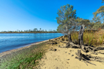 Ochlockonee River, Designated Florida Canoe Trail, Ochlockonee River State Park, Wakulla County, Sopchoppy, FL