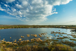 View of Seagrove Lake and Chesser Prairie, Okefenokee National Wildlife Refuge, near Folkston, GA