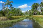 Tidal Creek and Salt Marsh with Reflections in Spring, Carteret County, Straits, NC