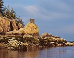 Osprey Nest on Jagged Coastline of Sutton Island