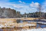Lawrence Brook after Snowfall, Royalston, MA