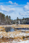 Lawrence Brook after Snowfall, Royalston, MA