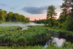 Lawrence Brook and Marsh in Early Morning, Royalston, MA