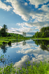Cloud Reflections and Wetlands on Tributary of Millers River in Birch Hill Recreation and Wildlife Management Area, Royalston, MA