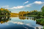 Cloud Reflections at Lawrence Brook, Royalston, MA