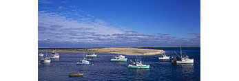 Fishing Fleet and Tern Island