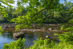 Early Morning Light on Millers River, Bearsden Conservation Area, Athol, MA