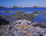 Rocks and Tidal Zone on Turnip Island out to Dumpling Islands, Cross Island and Fox Island Thorofare