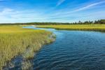 Tributary of Hubbard Creek, Hubbard County Park, Long Island, Southampton, NY