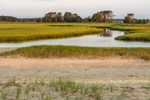 Hubbard Creek and Salt Marshes in Early Morning Light, Hubbard County Park, Long Island, Southampton, NY