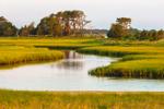 Hubbard Creek and Salt Marshes in Early Morning Light, Hubbard County Park, Long Island, Southampton, NY