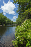 Millers River, Bearsden Conservation Area, Athol, MA