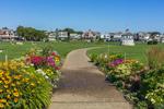 Colorful Flowers along Walkway in Ocean Park with Gazebo in Background, Martha's Vineyard, Oak Bluffs, MA