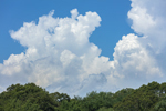 Thunderhead Clouds Buiilding over Congdon Cove, Point Judith Pond, South Kingstown, RI