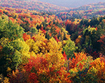 Overview of Spectacular Fall Colors, Green Mountain National Forest