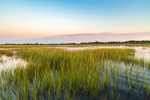 Salt Marsh on Pine Island Creek, Cape Cod, Yarmouth, MA