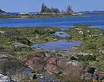 Rocks and Tidal Zone on Turnip Island with View of Dumpling Islands