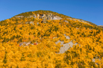 Mount Webster with Rock Slides, Crawford Notch State Park, White Mountains Region, Harts Location, NH