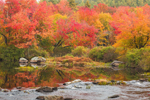 Colorful Fall Foliage along the Millers River, Royalston, MA