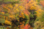 Colorful Fall Foliage along Millers River, Winchendon, MA