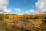 Bromley Brook Pond and Green Mountain National Forest in Fall, Winhall, VT