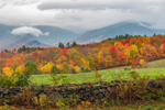 Green Field, Stone Wall, Fall Foliage and Franconia Range under Stormy Skies, White Mountains Region, View from Sugar Hill, NH