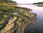 Connecticut River Shoreline, Watch Rock Nature Preserve