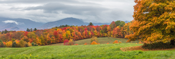 Green Field, Fall Foliage and Franconia Range under Stormy Skies, White Mountains Region, View from Sugar Hill, NH