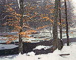 Lingering Beech Leaves along Green River in Winter
