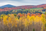 Rural Farmland and Mountainsides with Fall Foliage, Northeast Kingdom, Charleston, VT