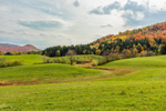 Rolling Hills and Green Fields in Fall, Rosebrook Hill, Northeast Kingdom, Brighton, VT