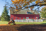Big Red Barn at Crossen Farm, Built 1899, Coventry, CT