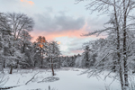 Sunrise at Beaver Brook in Winter, Royalston, MA