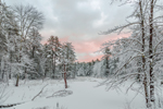 Sunrise at Beaver Brook in Winter, Royalston, MA