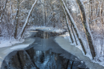 Mount Misery Brook after Fresh Snowfall, Pachaug State Forest, Voluntown, CT