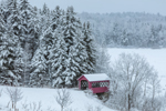 Red Covered Bridge at Little Bridge Farm after Fresh Snowfall, Wilmington, VT