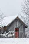 Old Natural Wood Shed with Wreath after Fresh Snowfall, Village of Jacksonville, Whitingham, VT