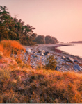 Early Morning Light on Shoreline of Sheffield Island, Stewart B. McKinney National Wildlife Refuge, Long Island Sound, Norwalk Islands, Norwalk, CT