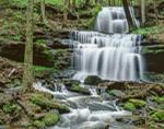 Waterfall on Gunn Brook, Sunderland, MA