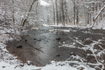 Coginchaug River in Snowstorm, Wadsworth Falls State Park, Rockfall Village, Middlefield, CT
