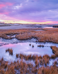 Sunrise over Salt Marsh and Tidal Pool at Mill Creek, Cape Cod, Sandwich, MA