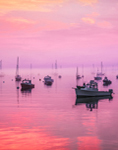 Predawn and Light Fog over Boats in Southwest Harbor, Mt. Desert Island, Village of Manset, Southwest Harbor, ME