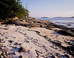 Beach of White Crushed Shells on Western Side of Saddleback Island