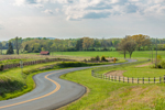 Country Road Winds through Farm Pastures and Fences in Spring, Piedmont Region, Albemarle County, Tapscott, VA