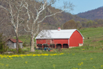 Red Barn with Tractors in Early Spring, Virginia Piedmont Region, Bedford County, near Penicks Mill, VA