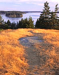 Path through Meadow on Russ Island