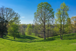 Green Rolling Pastures in Rural Farmland, Piedmont Region, Iredell County, Statesville, NC
