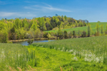 Green Fields, Pond, and Rolling Hills in Spring, Piedmont Region, Spartanburg County, Campobello, SC